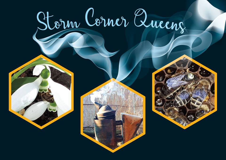 Storm Corner Queens home logo